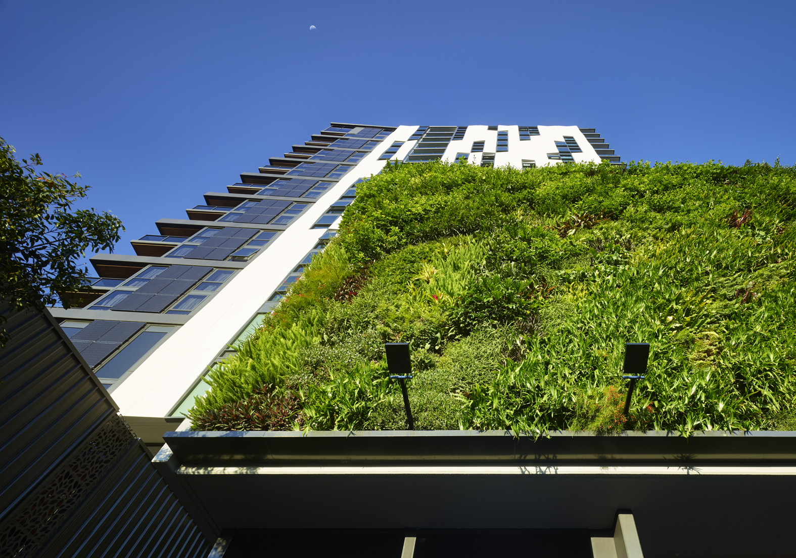 Rothelowman Architecture South Brisbane, QLD Botanica Residences