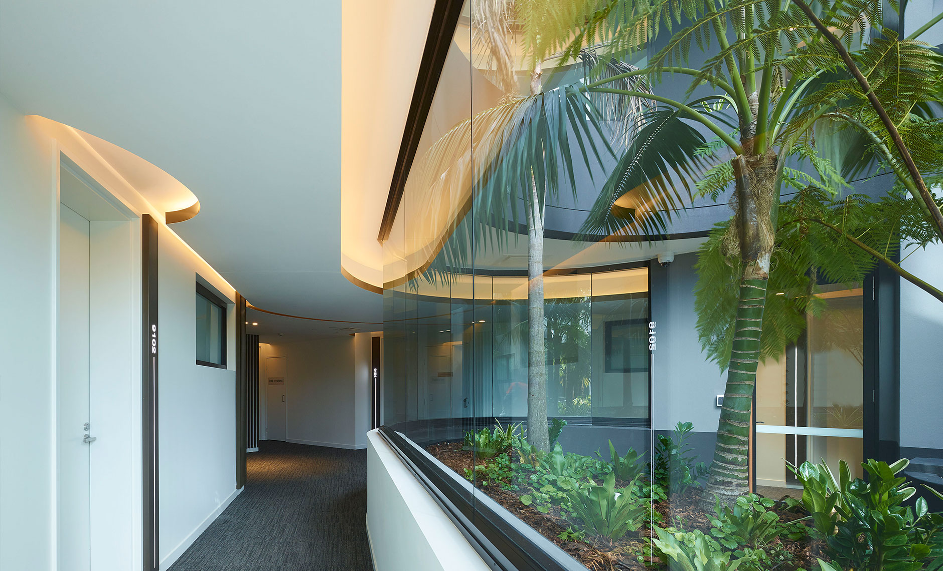 Rothelowman Architecture Newport, QLD Newport